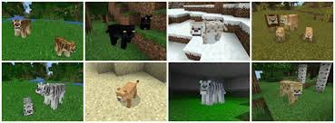 Minecraft Melon Seeds Pe by Pocket Creatures Mc Pe 0 15 X 0 16 X Elephants Lions
