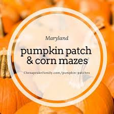 Pumpkin Patch Prince Frederick Md by 32 Best Quotes Images On Pinterest Luxury Icons And Green