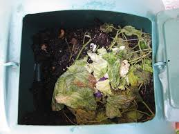 Compost | Backyard FL Gardening Alcatraz Volunteers Composter Reviews 15 Best Bins And Tumblers Of 2017 Ecokarma 25 Outdoor Compost Bin Ideas On Pinterest How To Start Details About Compost Turner Tumbler Bin Backyard Worm Heres We Used Worms To Get The Free 5 Bins Form The City Phoenix Maricopa County Food Homemade Pallet Composting Garden Make An Easy Diy Blissfully Domestic