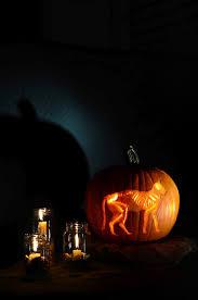 Skeleton Pumpkin Carving Patterns Free by Skeleton Cat Printable Pumpkin Carving Pattern Vintage Kitty