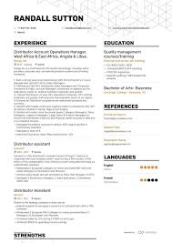 Vice President Of Operations Resume Example And Guide For 2019 12 Operations Associate Job Description Proposal Resume Examples And Samples Free Logistics Manager Template Mplates 2019 Download Executive Services Professional Food Templates To Showcase Example Vice President For An Candidate Retail How Draft A Sample Restaurant Fresh Educational Director Of 13 Transportation