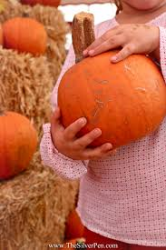 Pumpkin Patch Bellingham Wa by Friday Photos A Whirlwind Of A Week The Silver Pen