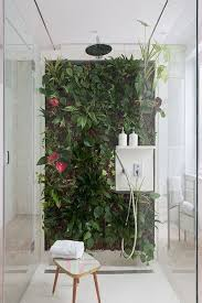 Best Bathroom Pot Plants by Living Wall Living Walls Showers And Plants