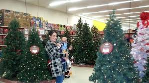 Sears Artificial Christmas Trees Unlit by Christmas Tree In Kmart Lit Spruce Tree This Is The Perfect Time