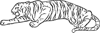 Zoo De Berlin Tiergarten Affenhaus Maison Des Singes De Tigre Dessin