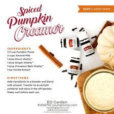 Fontana Pumpkin Spice Sauce Ingredients by 100 138 Best Pumpkin Activities Images On Pinterest Fall Fall