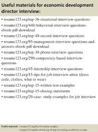 VP Business Development Sample Resume Executive Writing