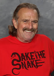 Halloween Havoc 1999 Incident by Jake Roberts Wikipedia