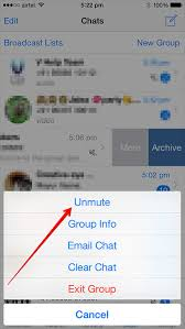 How to Mute Specific WhatsApp Chats on iPhone