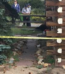 Sofa Mart Lone Tree Colorado by Bull Elk Put Down After Attacks On 2 Women In Estes Park Fox31