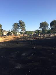 Cal Poly Pumpkin Patch 2016 by Firefighters Extinguish Grass Fire In Paso Robles Ksby Com San