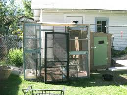 Show Me Your Duck Shelters | BackYard Chickens Lodge Dog House Weather Resistant Wood Large Outdoor Pet Shelter Pnic Shelter Plans Wooden Shelters Band Stands Gazebos Favorite Backyard Sheds Sunset How To Build Your Dream Cabin In The Woods By J Wayne Fears Mediterrean Memories Show Garden Garden Zest 4 Leisure Ashton Bbq Gazebo Youtube Skid Shed Plans Images 10x12 Storage Ideas Blueprints Free Backyards Trendy Neenah Wisc Family Discovers Fully Stocked Families Lived Their Wwii Backyard Bomb Bunkers Barns And For Amish Built Amazoncom Petsfit 2story Weatherproof Cat Housecondo Decoration Best Bike Stand For Garage Way To Store Bikes