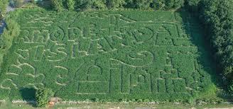 Pumpkin Patch Corn Maze Snohomish Wa by 36 Great Corn Mazes Across America Farm Flavor