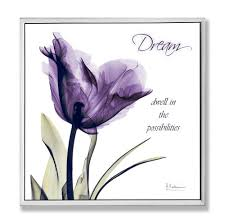 Amazon Stupell Home Decor Dream Purple Flower X Ray Art Wall Plaque 12 05 Proudly Made In USA Kitchen