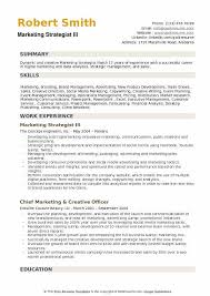Marketing Strategist III Resume Model