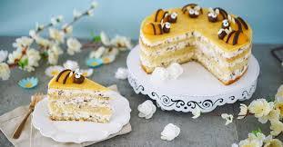 stracciatella torte mit aprikosen