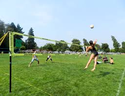 Number 1 Rated Portable Outdoor Net Systems For Volleyball ... Grass Court Cstruction Outdoor Voeyball Systems Image On Remarkable Backyard Serious Net System Youtube How To Construct A Indoor Beach Blog Leagues Tournaments Vs Sand Sports Imports In Central Park Baden Champions Set Gold Medal Pro Power Amazing Unique Series And Badminton Dicks