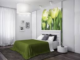 bedrooms bedroom decorating ideas light green walls and black