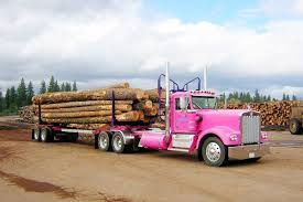1974 Kenworth W900A | Logs, Rigs And Biggest Truck Truck With Logs Heavyhauling Pinterest The 1945 Intertional Logging Sierra Nevada Museum My Brakes Locked Up Logging Truck Driver At Cape Perpetua Hq 142 Hdx For Spin Tires Update Rolls Over On Ashby Road Kenworth 849 Pre Load Ta Trailer Forestech A Log Loader Or Forestry Machine Loads At Site 1949 Diamond T 2014 Antique Show Put O Flickr 16th Bruder Mack Granite Knuckleboom Grapple Crane Charlotte County Man Suffers Minor Injuries In Wreck Harvester Mule Train Simulator 2 Android Apps Google Play