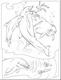Astounding Dolphin Coloring Pages Adult With Underwater And Themed