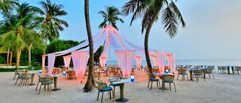 100 Dusit Thani Maldives Restaurants Bars