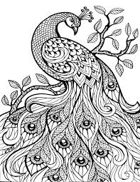 Coloring Pages For Adults Difficult Animals Hard Animal Printable