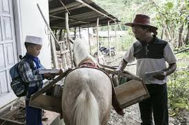 Weiss Schwarz Deck Builder Java by How One Man And His Horse Created A Mobile Library In Indonesia