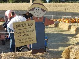 Pumpkin Patches Near Dallas Tx 2015 by Hall U0027s Pumpkin Patch And Corn Maze Grapevine Having Fun In The