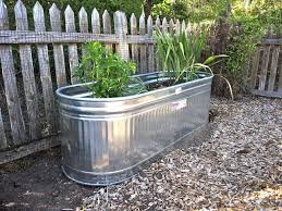 Galvanized Stock Tank Bathtub by Galvanized Water Trough Planters U2022 Nifty Homestead