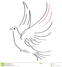Dove clipart flight sketch 6
