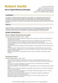 Digital Marketing Strategist Resume Example