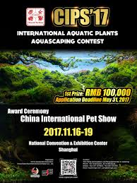Top 100 Of The First CIPS Global Aquatic Plants Aquascaping ... Planted Tank Contest Aquarium Design Aquascape Awards How To Create Your First Aquascaping Love Pin By Marius Steenblock On Pinterest The Month September 2008 Pinheiro Manso Creating Nature Part 1 Inspiration A Beginners Guide To Aquaec Tropical Fish Style The Complete Brief Progressive Art Of 2013 Xl Pt2 Youtube Aquadesign Dutch Sytle Aquascape Best Images On Appartment Iwagumi Der Der Firma Dennerle Ist Da Aqua Nano