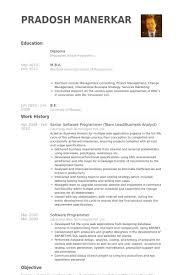 Senior Software Programmer Team Lead Business Analyst Resume Example