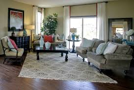Model Home Living Room Eclectic