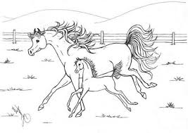 Horse Mother Running With Her Baby In Horses Coloring Page