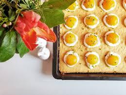 meine 10 lieblings blechkuchen rezepte aus dem thermomix