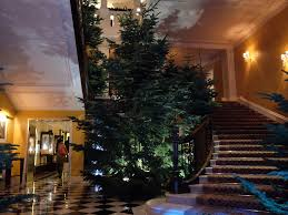 Christmas Tree Types In California by Photos Apple U0027s Jony Ive Designs Christmas Tree For Claridge U0027s