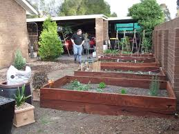 How To Make Raised Garden Beds For Vegetables - The Greening Of Gavin Thriving Backyard Food Forest 5th Year Suburban Permaculture Bill Mollison Father Of Gaenerd 101 Pri Cold Climate Archives Chickweed Patch Garden Design With Permaculture Kitchen Herb Spiral Backyard Orchard For The Yards Pinterest Orchards Australian House Garden January 2017 Archology Download Design And Ideas Gurdjieffouspenskycom Sustainable Farm Future Best 25 Ideas On Vegetable Youtube
