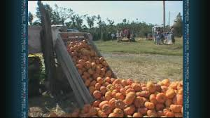 Pumpkin Patches In Oklahoma by Travelok Com Oklahoma U0027s Official Travel U0026 Tourism Site