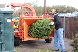 Walmart Flocked Christmas Trees by Public Works Christmas Tree Recycling