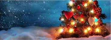 Beautiful Christmas Tree Snow Facebook Cover Photos
