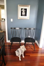 dining room chairs decor and the dog