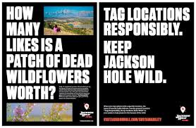 Stay Wild' Campaign Pivots To Sustainability | Town & County ... Baltimore Md Deals Discounts And Coupons Things To Do In 22 Hidden Chrome Features That Will Make Your Life Easier Affiliate Marketing 5 Ways To Energize Affiliates Fire Mountain Grill Coupons Lily Direct Promo Code Craw Teardrop Earrings A Little Fresher Latest October 2019list Of 50 Art Programs For Firemountain Gems Boeing Flight Tour Lineup Imagine Music Festival Events Archive City Nomads Jbake Mountain Gems Coupon Promo Code