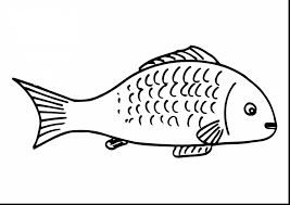 Beautiful Fish Coloring Pages With Fishing And Bass
