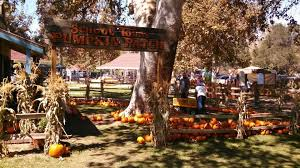Oak Glen Pumpkin Patch Yucaipa by Trail Mixed Memories September 2014