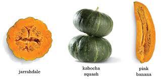 Varieties Of Pumpkins by Pumpkin U0026 Squash Ingredient Guide Pumpkin Recipes Squash Recipes