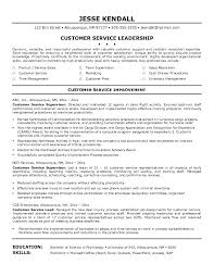Resume Examples For Airline Customer Service And Summary Popular Profile
