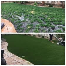Have A Ball In Your Yard Home Garden Tucsoncom