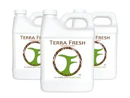 100 Fresh Home And Garden Terra And TomatoesPeppers