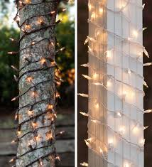 Types Of Christmas Tree Lights by Net Lights And Tree Wraps